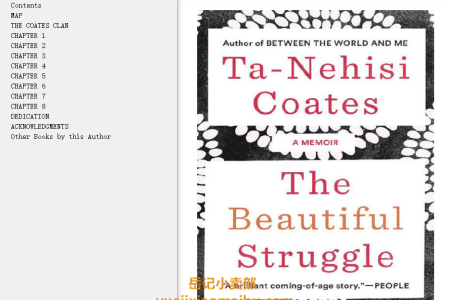 The Beautiful Struggle: A Father, Two Sons and an Unlikely Road to Manhood by Ta-Nehisi Coates