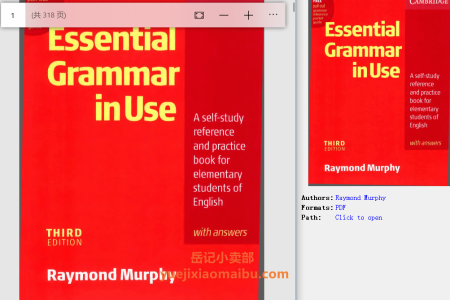 Essential Grammar in Use with Answers 3rd Edition (Grammar in Use) by Raymond Murphy