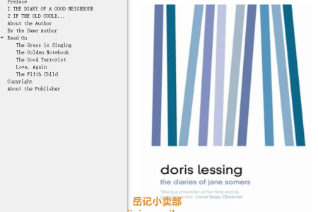 【电子书】The Diaries of Jane Somers by Doris Lessing(mobi,epub,pdf)