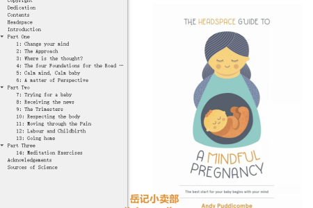 【配音频】The Headspace Guide To...A Mindful Pregnancy by Andy Puddicombe(mobi,epub,pdf)