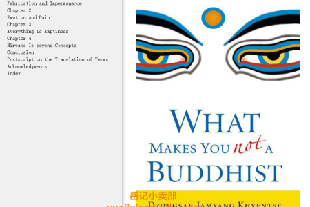 【配音频】What Makes You Not a Buddhist by Dzongsar Jamyang Khyentse(mobi,epub,pdf)