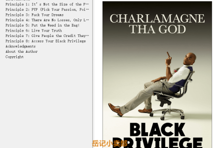 【配音频】Black Privilege: Opportunity Comes to Those Who Create It by Charlamagne Tha God(mobi,epub,pdf)