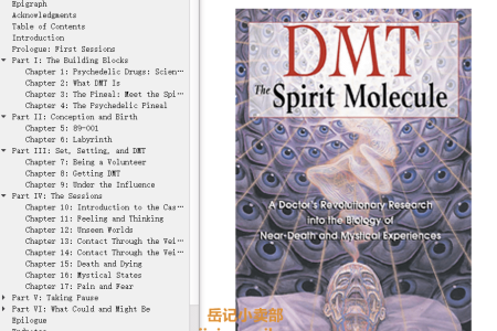 【配音频】DMT: The Spirit Molecule: A Doctor's Revolutionary Research into the Biology of Near-Death and Mystical Experiences by Rick Strassman(mobi,epub,pdf)