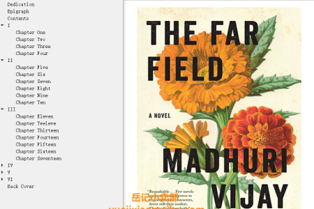【配音频】The Far Field by Madhuri Vijay(mobi,epub,pdf)