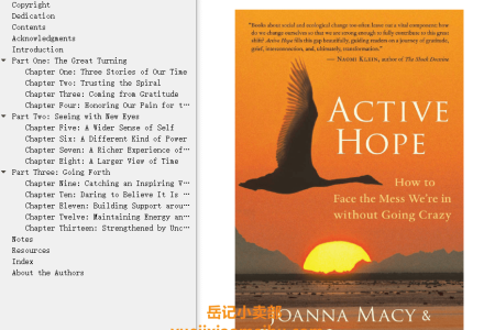 【配音频】Active Hope: How to Face the Mess We're in without Going Crazy by Joanna Macy, Chris Johnstone(mobi,epub,pdf)