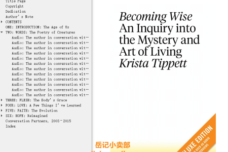 【配音频】Becoming Wise: An Inquiry into the Mystery and Art of Living by Krista Tippett(mobi,epub,pdf)