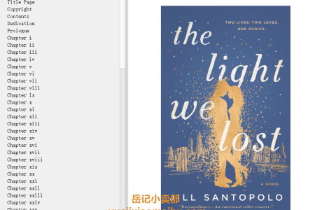 【配音频】The Light We Lost by Jill Santopolo(mobi,epub,pdf)