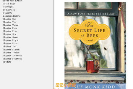 【配音频】The Secret Life of Bees by Sue Monk Kidd(mobi,epub,pdf)