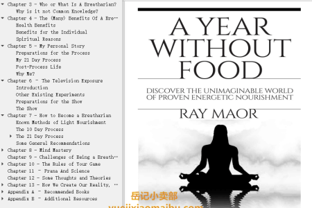 【电子书】A Year Without Food: Discover the Unimaginable World of Proven Energetic Nourishment (Spiritual Energy for Healthy Life) by Ray Maor(mobi,epub,pdf)
