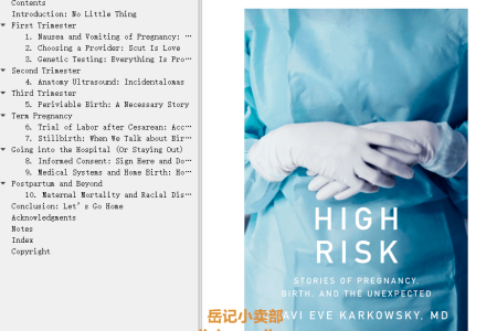 【配音频】High Risk: Stories of Pregnancy, Birth, and the Unexpected by Chavi Eve Karkowsky(mobi,epub,pdf)